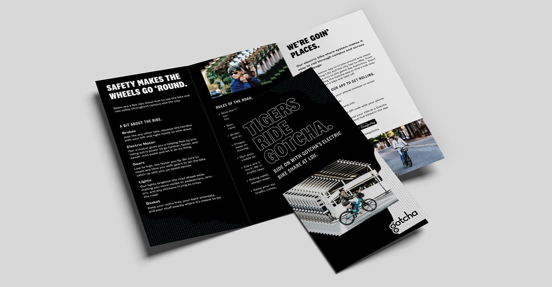 8col_Brochure